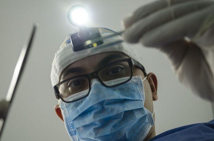 stomatolog wybór